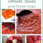 Roasted Red Plum Tomato Sauce ~ Great Freezer Recipe