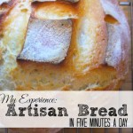 Artisan Bread in Five Minutes a Day: My Experience