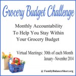 Grocery Budget Challenge | January Meeting