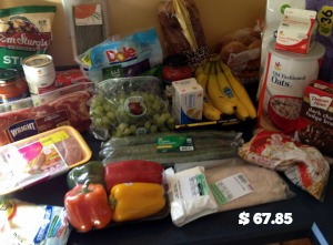 March Groceries 8