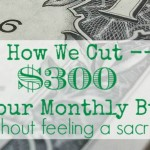 How We Cut $300 from our Budget Without Feeling a Sacrifice