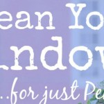 Clean Your Windows for Just Pennies