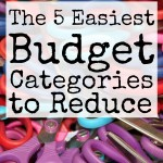 5 Easy Budget Categories to Reduce