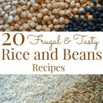20 Frugal & Tasty Rice and Beans Recipes