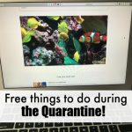 Free things to do during the quarantine