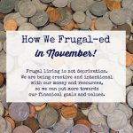 How We Frugal-ed in November 2020